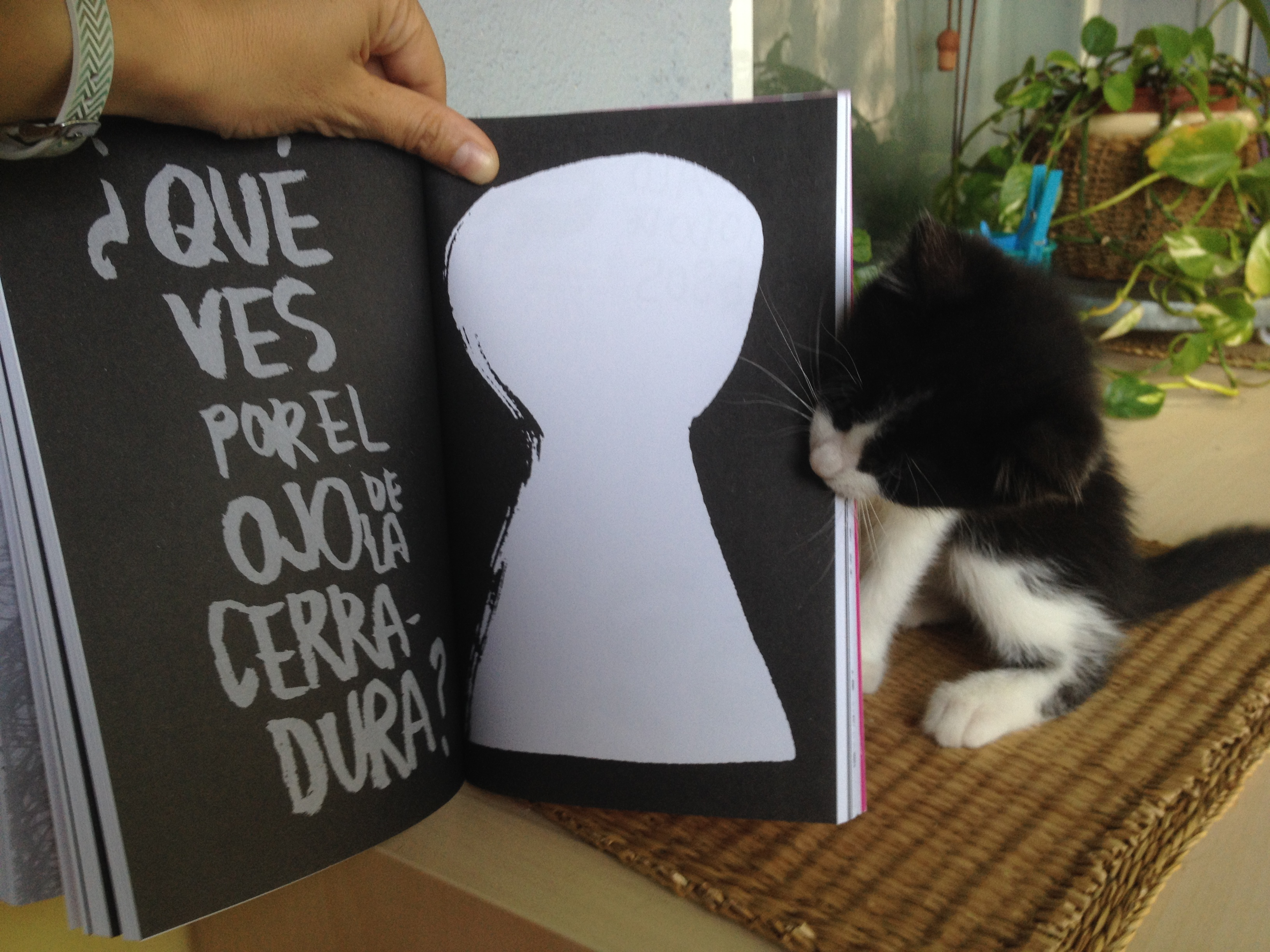 Libro creativo Top Secret. A mi gata también le gusta.