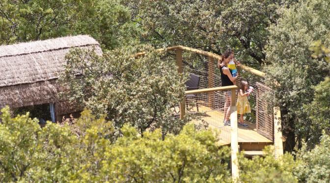 ¡Sobre un árbol de Madrid! Cabañas en los árboles en Lozoya