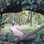 Jardín botánico de Gijón. Bosques y espectáculos para niños