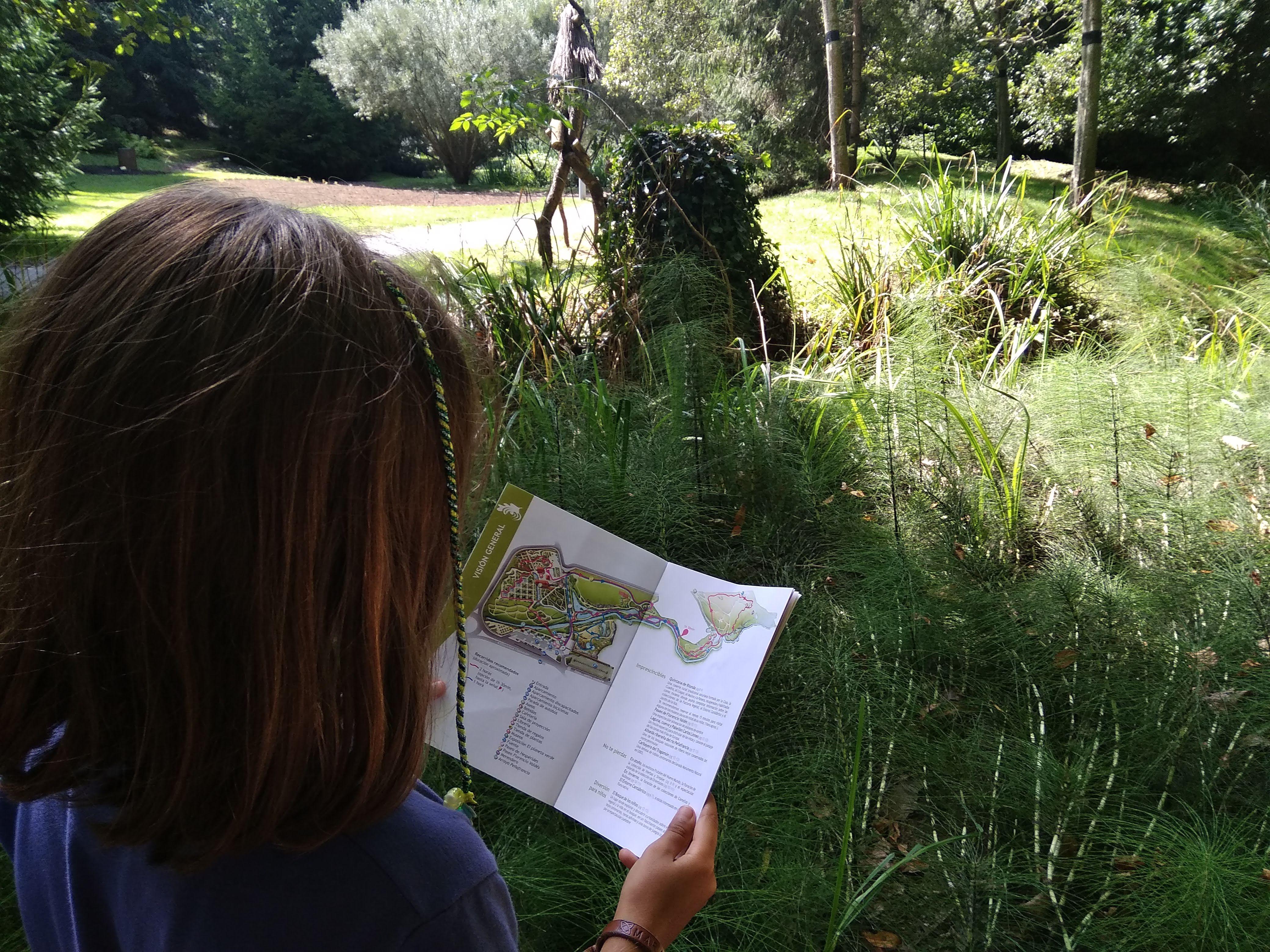 Mirando el plano del bosque cantábrico del Jardín botánico de Gijón @Particia Fernández