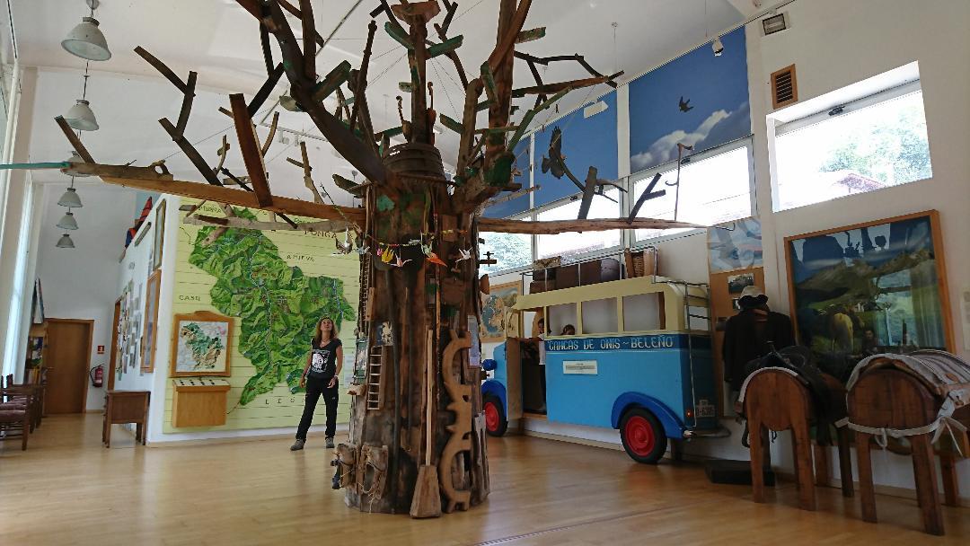 Senderismo con niños por el Valle del Ponga en Asturias. Ruta por un bosque oculto