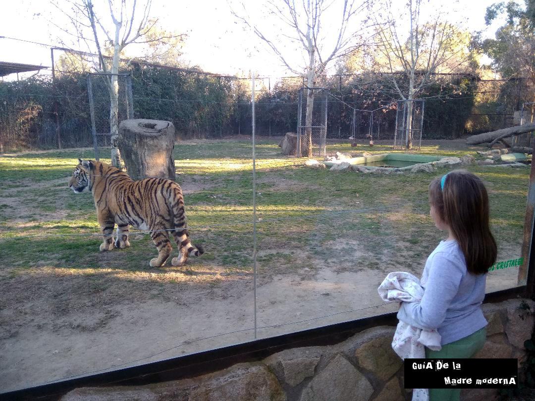 Safari Madrid con los niños ©José Ramón Aguirre