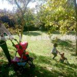Rutas con carro de niños por la sierra de Madrid