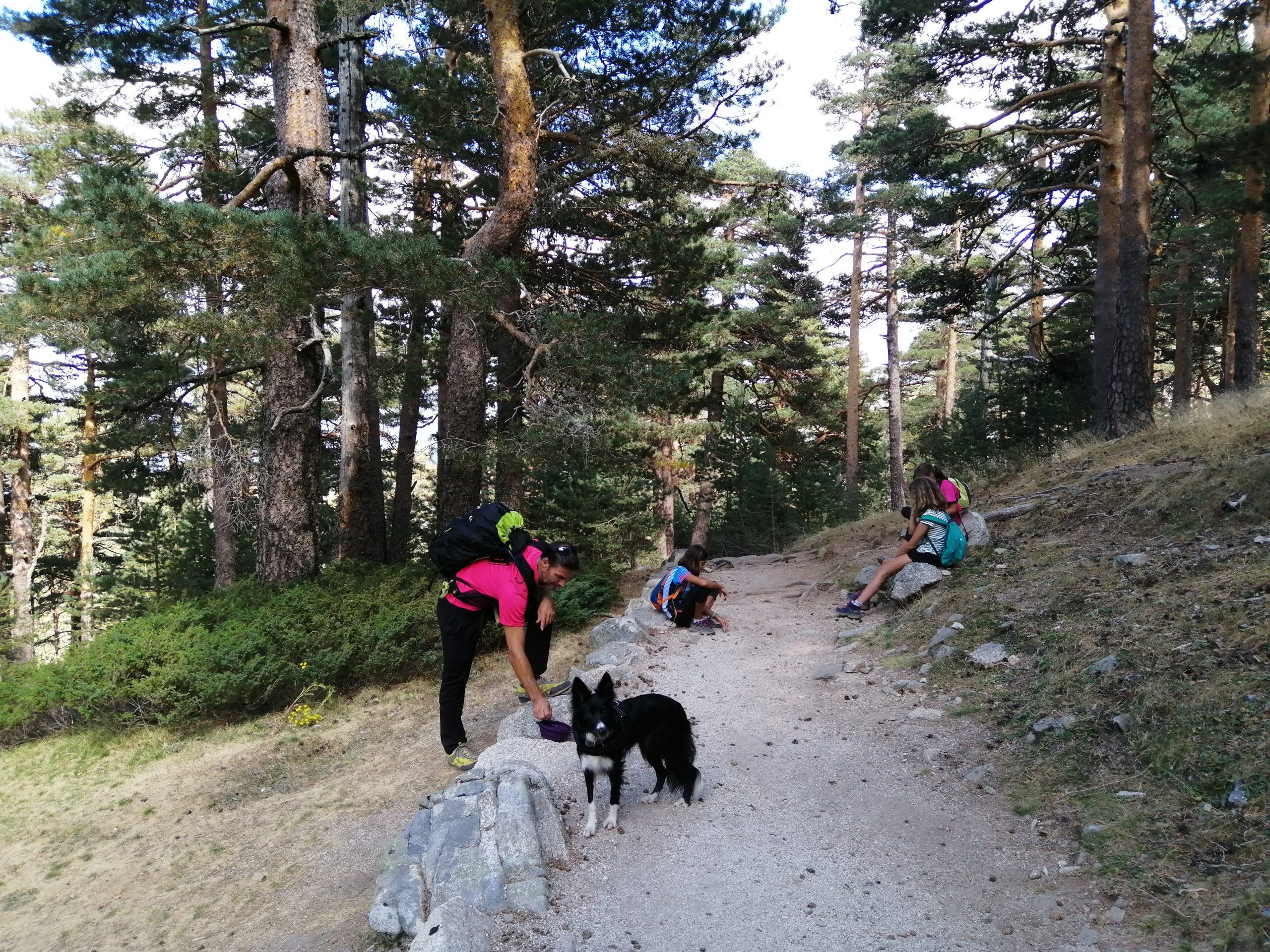 Camino Smith en la Sierra de Guadarrama